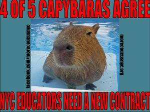 "alt=""capybaras agree NYC educators need a new contract"""