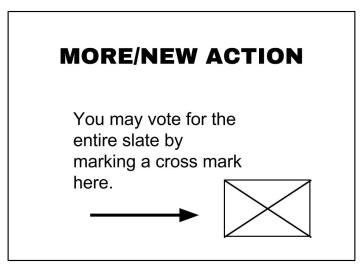 MORE-NEW ACTION slate vote (1)